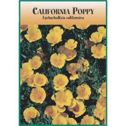 California Poppy Seed Packets Promotional Custom Imprinted With Logo