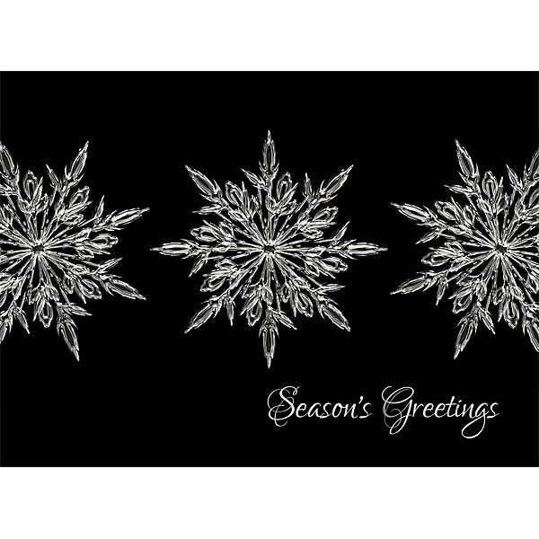 Imprinted seasons greetings holiday card 4allpromos best non denominational bulk holiday cards for businesses seasons greetings m4hsunfo