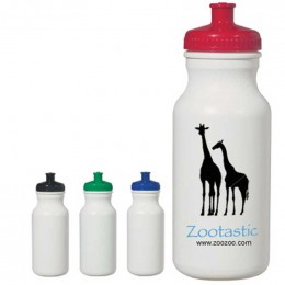 Evolve 20 oz. Water Bottle Promotional Custom Imprinted With Logo