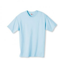 Hanes Authentic Tagless T-Shirt - Color Promotional Custom Imprinted With Logo
