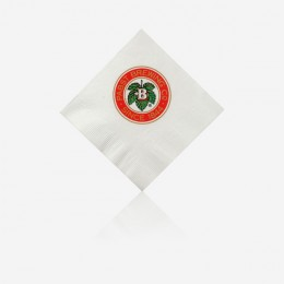 White Biodegradable Beverage Napkin Logo