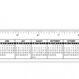 Monitor Ruler and Calendar Combo Strip