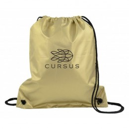 Colorful Drawstring Sports Back – Best wholesale business logo backpacks - Metallic gold